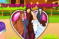 Aprendizagem de cuidado de cavalos
