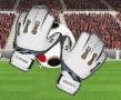 Guarda-redes Futebol