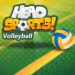 Cabeças Esportivas Voleibol