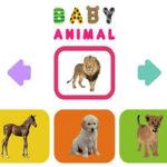 Animais Bebês