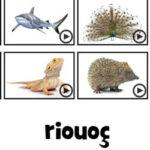 Palavras Misturadas: Animais