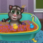 Banho ao gato Tom