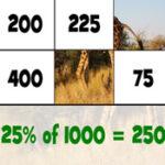 Quebra-cabeça de Cálculo de Porcentagens