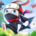Ninja Rabbit: O coelho Ninja