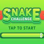 Desafio Snake