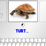 Digitar no Teclado: Animais em inglês