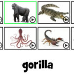 Decifrar Nomes de Animais em inglês