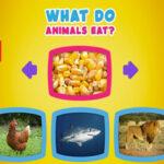 O que os animais comem