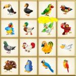 Encontre o Pássaro Diferente