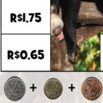 Puzzles com Dinheiro Brasileiro
