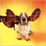 Quebra-cabeças Divertidos com Cães
