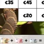 Quebra-cabeça com Cédulas de Euro