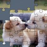 Quebra-cabeças de Cães Online