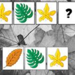 Seqüências com Folhas de Outono