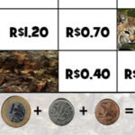 Somar Moedas de centavos e reais