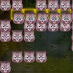 Tetris de gato