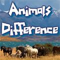 Encontre diferenças entre duas imagens de animais